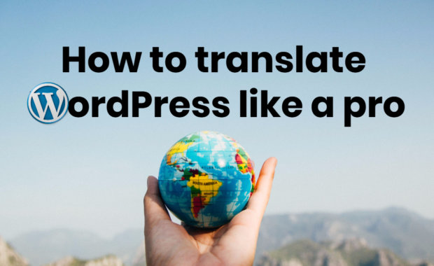 Translate wordpress like a pro